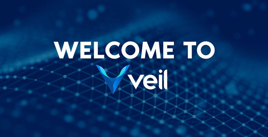 Image result for Veil ico